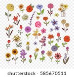 colored doodle sketch flowers.... | Shutterstock .eps vector #585670511