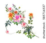watercolor painting of flower ... | Shutterstock . vector #585716537