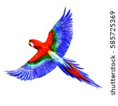 the parrot  made by hand drawn... | Shutterstock . vector #585725369