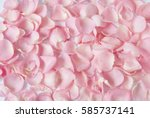 Stock photo pink rose petals closeup 585737141