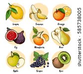 set of fruits drawn a line on a ... | Shutterstock .eps vector #585738005