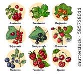 set of vector berries and... | Shutterstock .eps vector #585738011