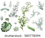 big set  elements   herbs  leaf.... | Shutterstock . vector #585778394