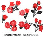 illustration with rose flowers... | Shutterstock .eps vector #585840311