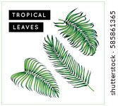palm tree leaves set. tropical. ... | Shutterstock . vector #585861365