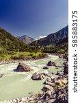 beautiful himalayan ... | Shutterstock . vector #585883175