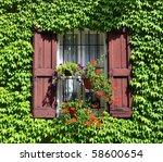 Rural Window Framed By Wine