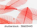 red paper leaves | Shutterstock . vector #58605445