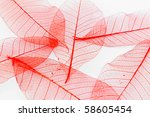 red paper leaves | Shutterstock . vector #58605454