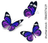 three monarch butterfly ...   Shutterstock . vector #586057619