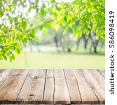 empty wooden table with garden... | Shutterstock . vector #586098419