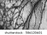 on the wall | Shutterstock . vector #586120601
