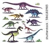 Skeletons Of Dinosaurs...