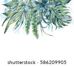 natural leaves exotic... | Shutterstock . vector #586209905