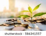financial growth  plant on pile ... | Shutterstock . vector #586341557