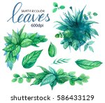 set of green leaves. floral... | Shutterstock . vector #586433129