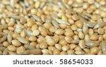 Birdseed Millet