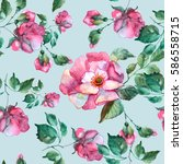 roses seamless pattern.... | Shutterstock . vector #586558715