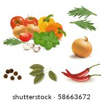 the colorful group of... | Shutterstock .eps vector #58663672