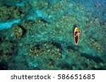 stand up paddle boarder  ... | Shutterstock . vector #586651685