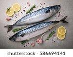 fresh raw fish. mackerel with... | Shutterstock . vector #586694141