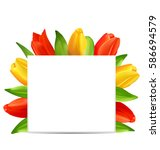 illustration abstract clean... | Shutterstock .eps vector #586694579