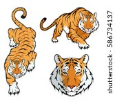 tiger set  isolated on white... | Shutterstock .eps vector #586734137