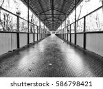 the bridge in black and white... | Shutterstock . vector #586798421