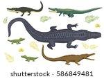 cartoon green crocodile danger... | Shutterstock .eps vector #586849481