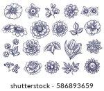 flower set | Shutterstock .eps vector #586893659