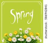 fresh spring background bouquet ... | Shutterstock .eps vector #586942841
