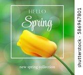 flower background and spring...   Shutterstock .eps vector #586967801