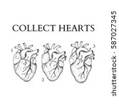 dotwork collect human hearts.... | Shutterstock .eps vector #587027345