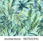 natural leaves exotic... | Shutterstock . vector #587031941