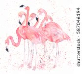 Watercolor Flamingos With...