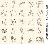 Human Body Parts Icons Plastic...