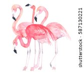 watercolor flamingos   Shutterstock . vector #587130221