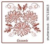 a beautiful bouquet of gazania... | Shutterstock .eps vector #587133815