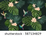 exotic tropical flowers and... | Shutterstock .eps vector #587134829