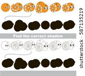 funny orange set to find the... | Shutterstock .eps vector #587135219