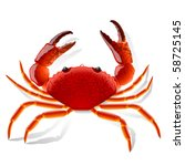 animal,aquatic,arthropod,astrology,beach,boiled,cartoon,claw,cooking,crab,crawfish,crayfish,crustacean,hard-shell,hard-shell crab