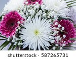 fresh big white chrysanthemum... | Shutterstock . vector #587265731