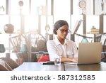 professional black entrepreneur ... | Shutterstock . vector #587312585