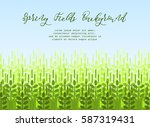 farming spring background with... | Shutterstock .eps vector #587319431