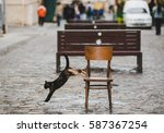 Stock photo the cat skips from chair 587367254