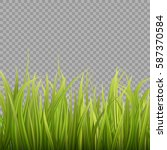 fresh green grass on... | Shutterstock .eps vector #587370584