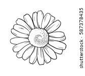 vector line art of white flower.... | Shutterstock .eps vector #587378435