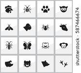 set of 16  zoology icons....