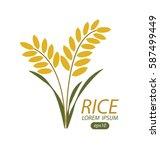 rice. vector illustration. | Shutterstock .eps vector #587499449