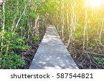 walk way in the mangrove forest ... | Shutterstock . vector #587544821